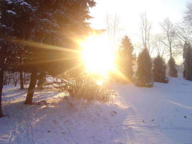 Даже в зимний морозный день Солнце отдает свою энергию.